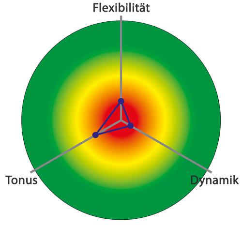 HRV-Messung, Patient im Burnout